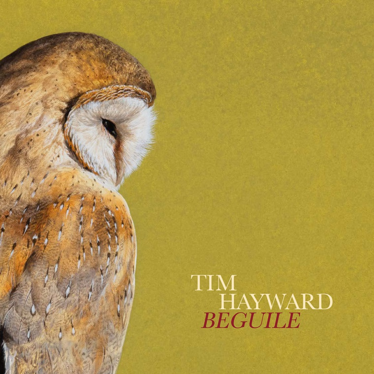 Tim Hayward: Beguile